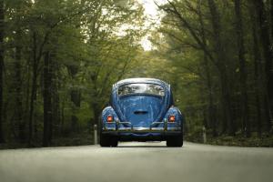 Elije el mejor seguro para tu auto.