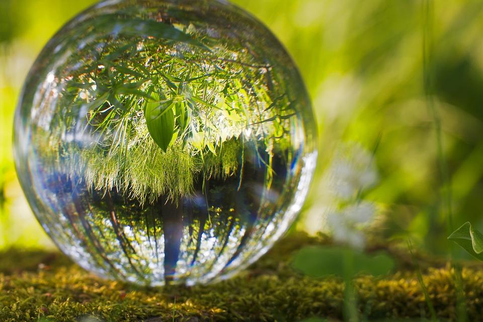 Las amenazas a la naturaleza ocuparán un lugar central inversiones ESG de las empresas